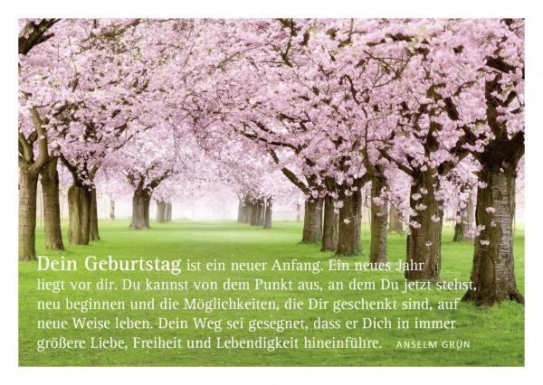 """Glückwunschkarte """"Blühende Bäume"""" mit Glückwunsch von Anselm Grün"""