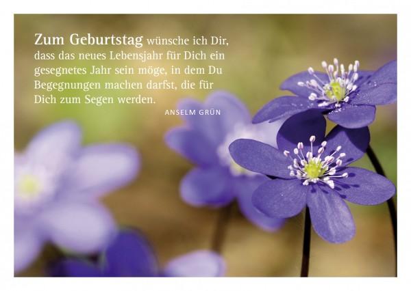 """Glückwunschkarte """"Blumen"""" mit Glückwunsch von Anselm Grün"""
