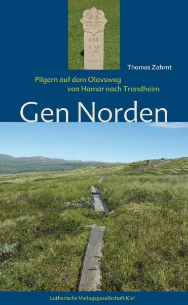 Gen Norden. Pilgern auf dem Olavsweg von Hamar nach Trondheim